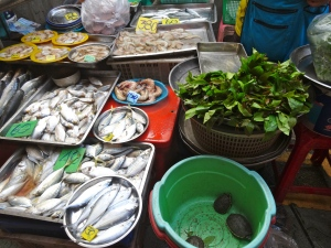Phuket Town Market  - lots of fresh fish and live turtles
