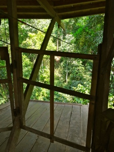 The front door of our tree house (tree house #7)