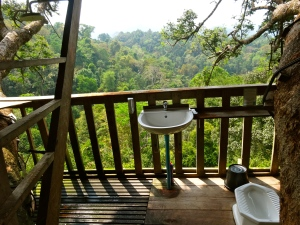 Our outdoor bathroom with rainforest shower.