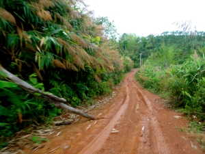Our off-road mountain drive into the Bokeo Nature Reserve.