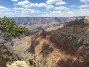 One angle of the Grand Canyon. Breathtaking!